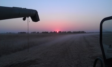 Harvesting soybeans at sunset 2012